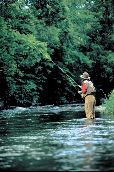 fly fishing stowe