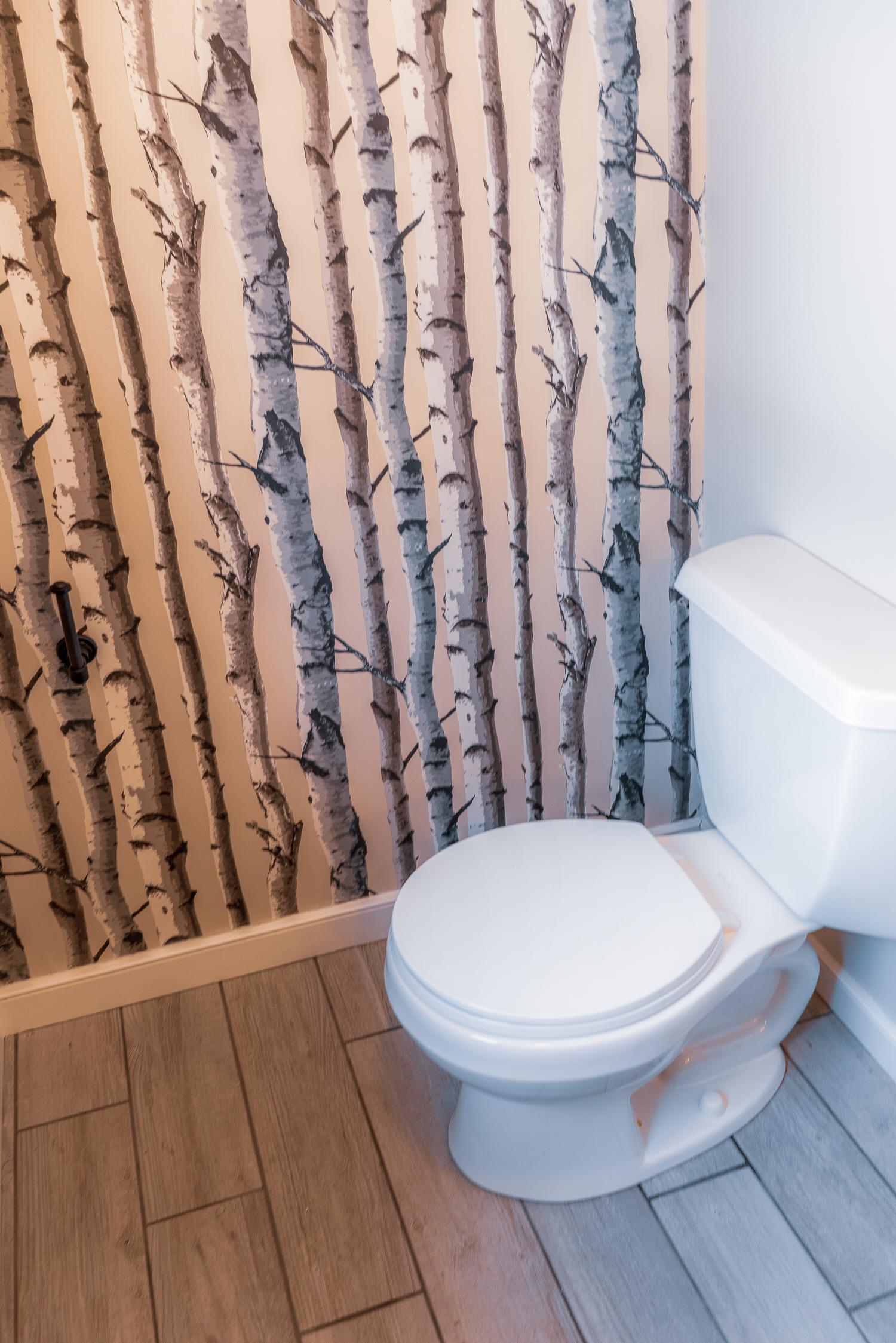 Powder Room Toilet.jpg