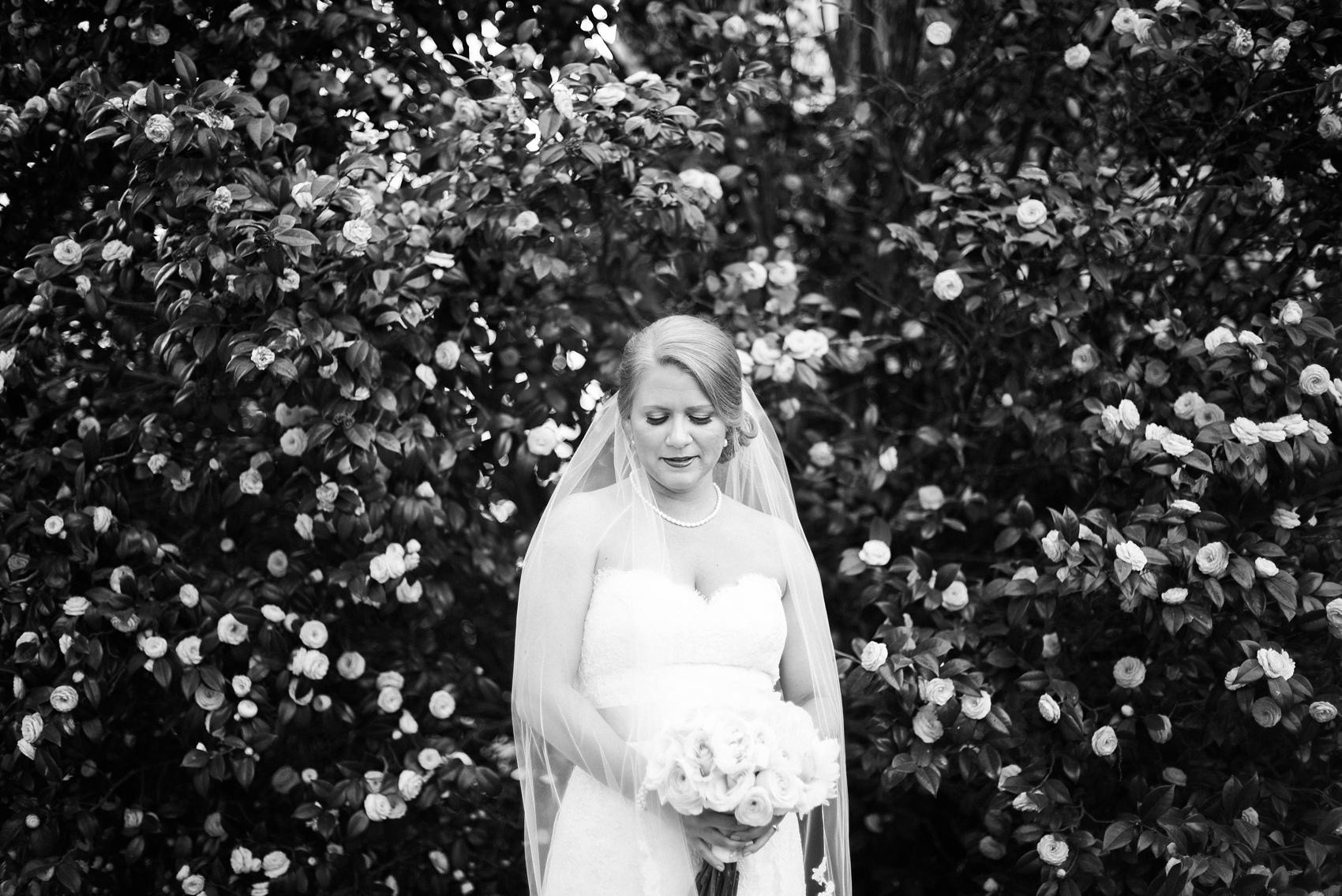 aiken_wedding_photographer_0156.jpg