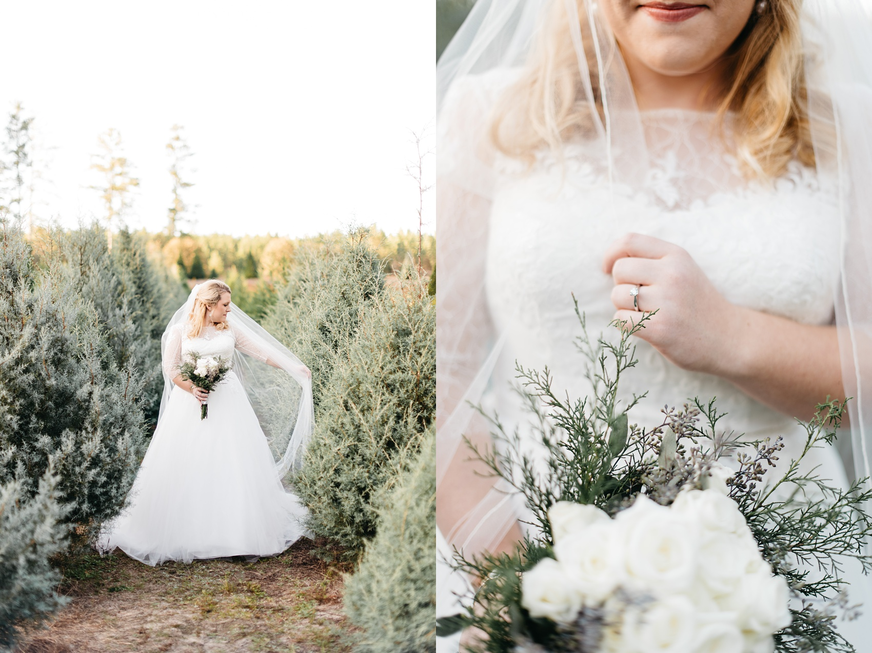 aiken_wedding_photographer_5283.jpg