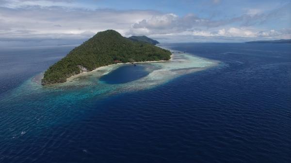 Mansuar_E-W_drone_view_high_alt.png