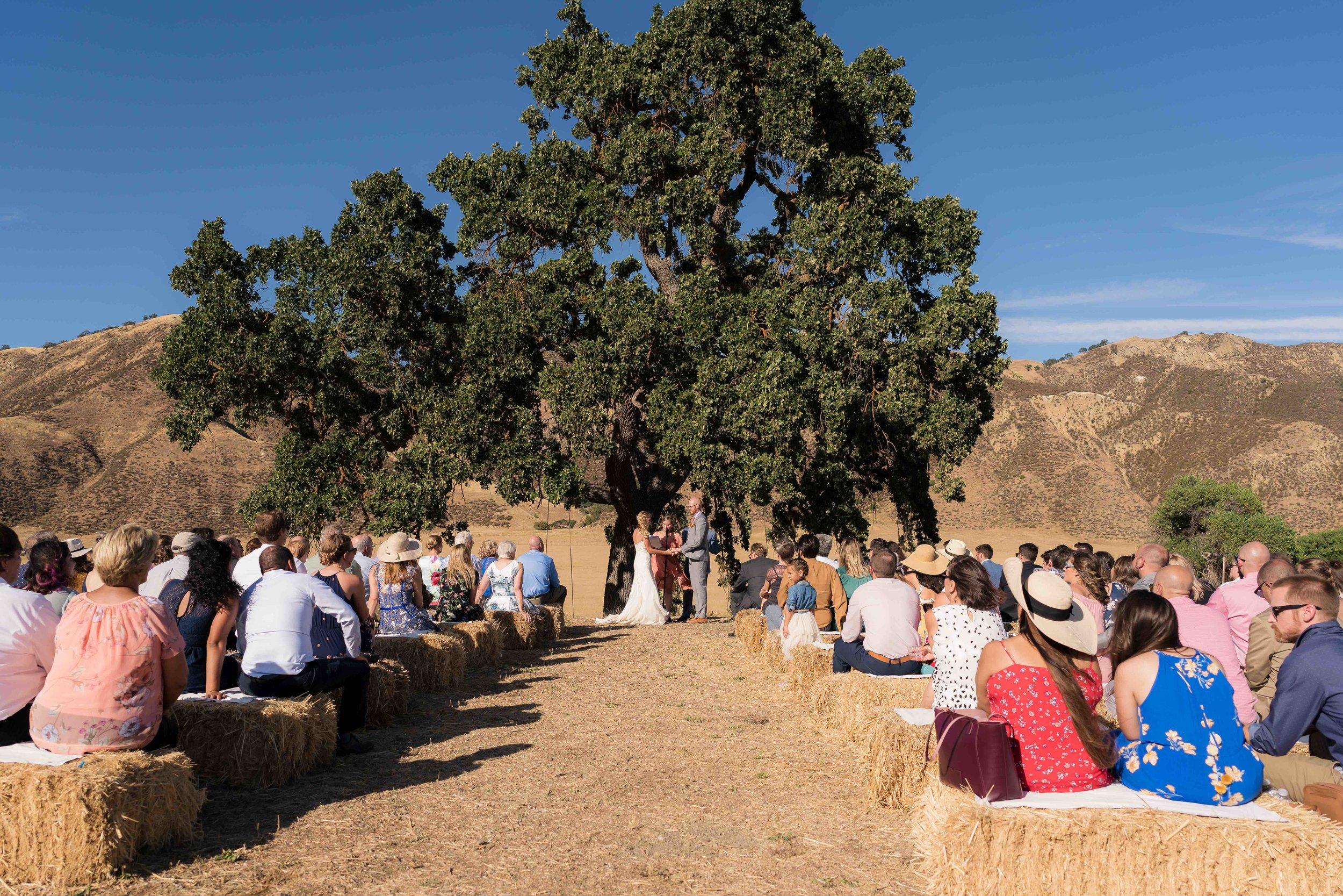 Wedding-297 SM.jpg