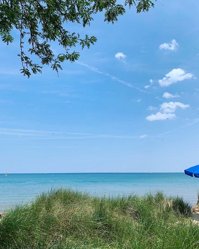 Summertime Sadie by Lake Michigan.