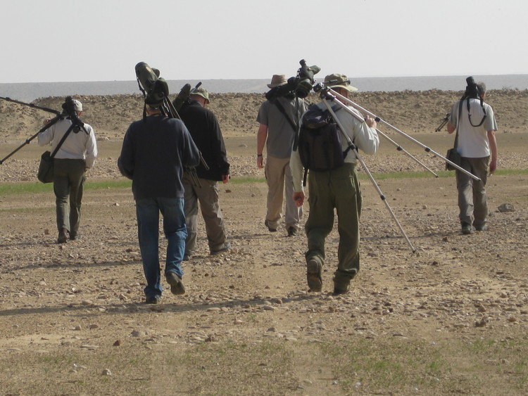 A Frenchman and five Englishmen about the important business of birding.