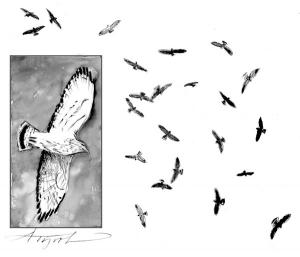 """A Fine Kettle of Hawks""by   Adelaide Tyrol"