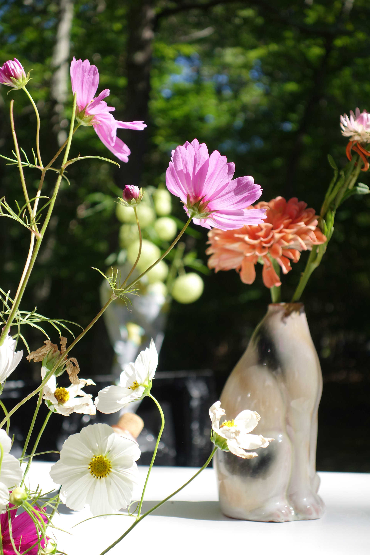 cat flowers.jpg
