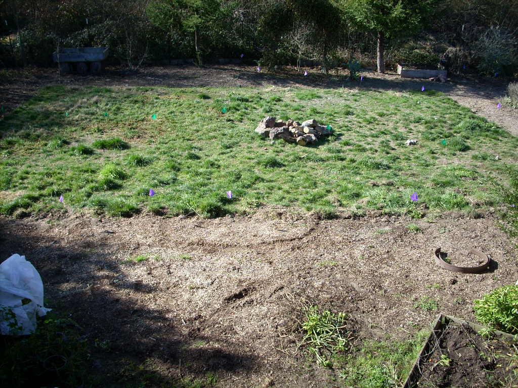 Dirt Field