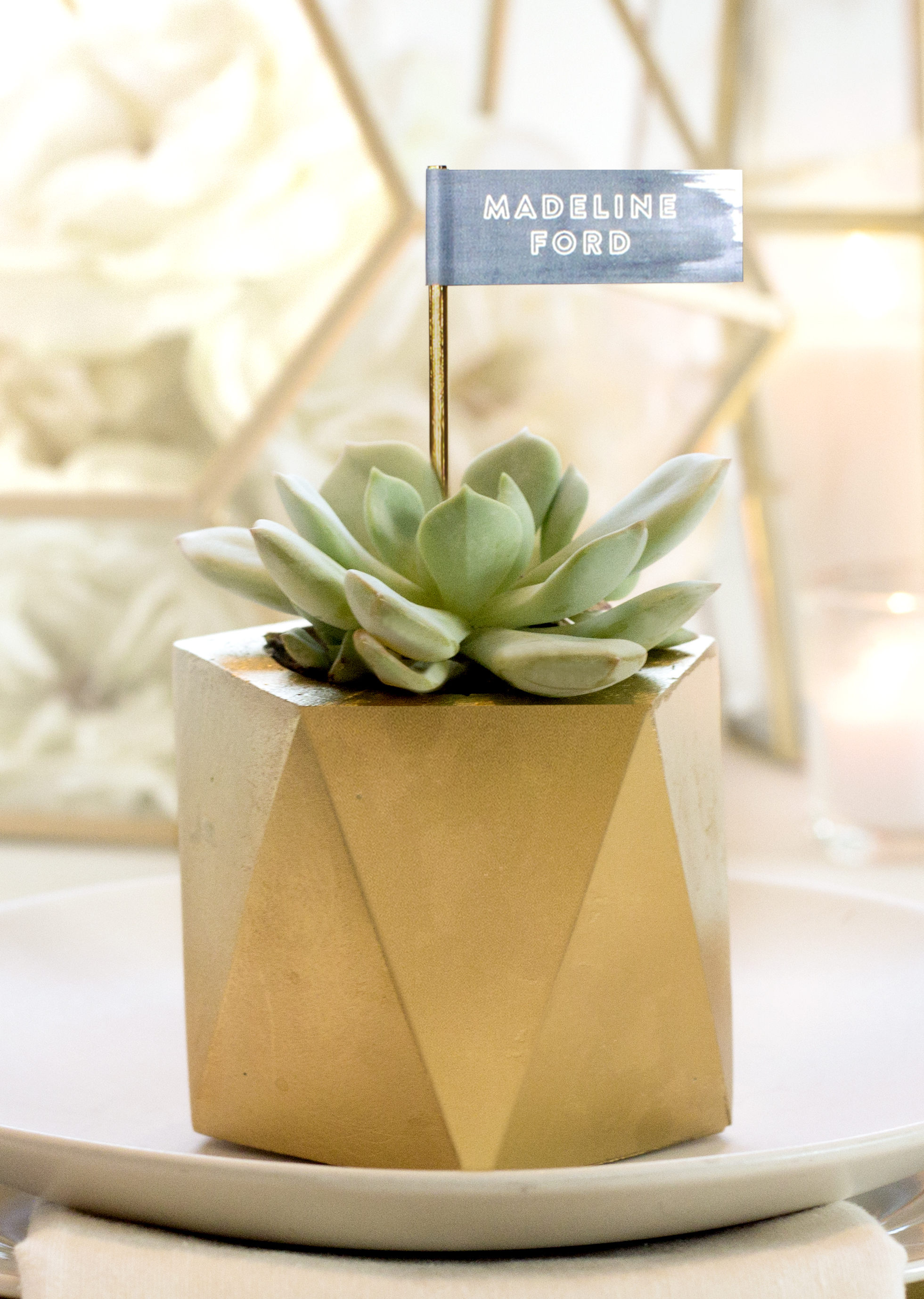 Gold Faceted Succulent Wedding Favors | Sugar & Gold