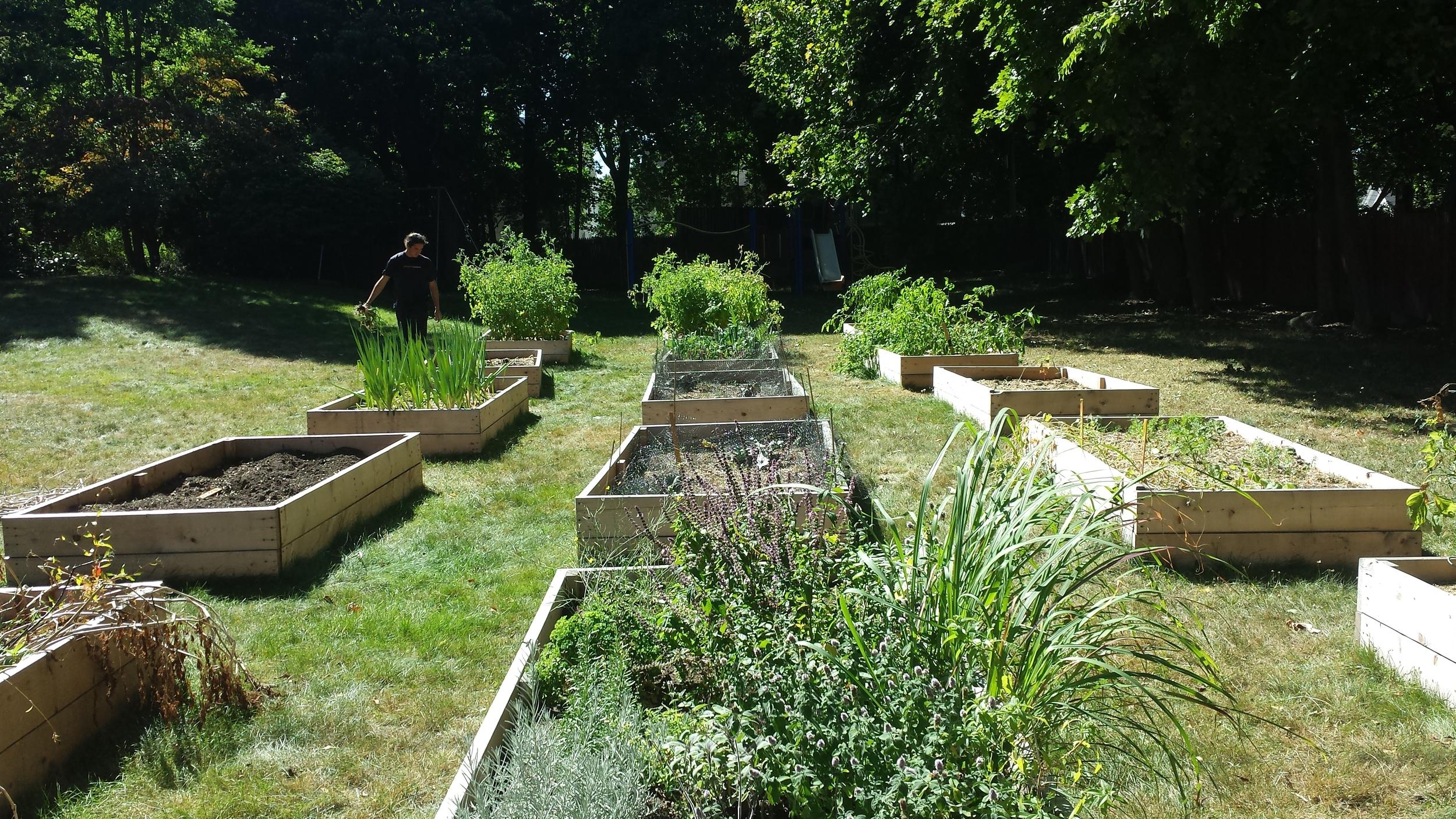 Epiphany School Garden