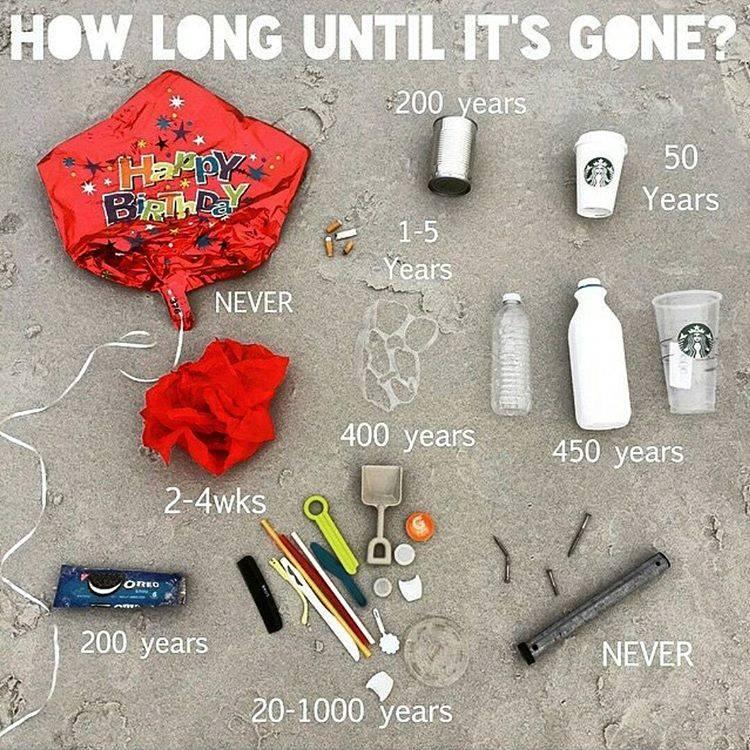 how long till its gone.jpg
