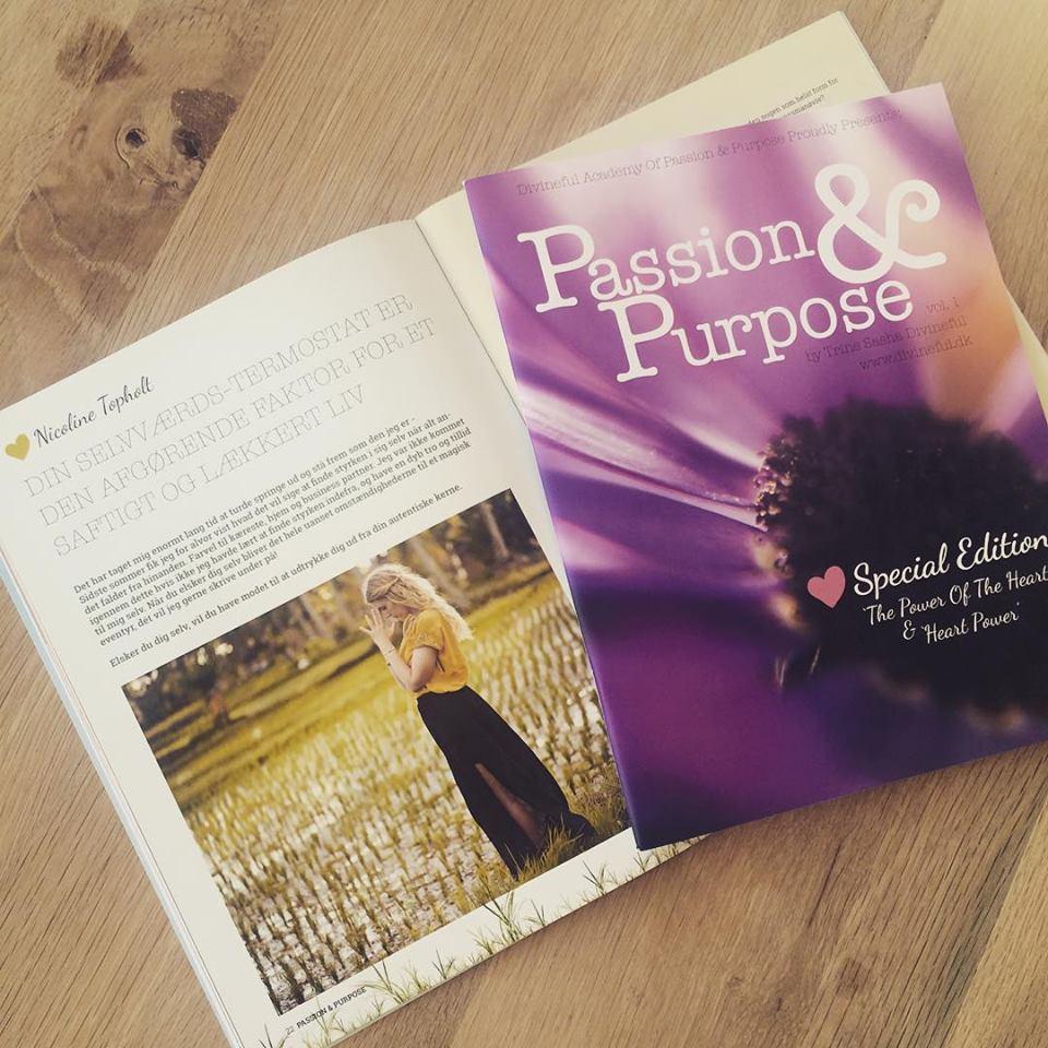Artikel i det bæredygtige blad Passion & Purpose