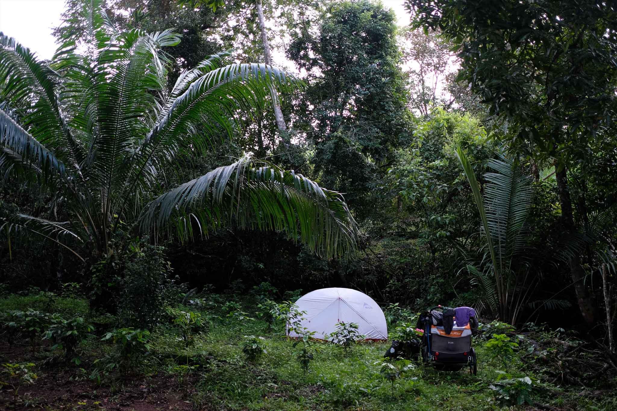 Jungle Camping in Panama