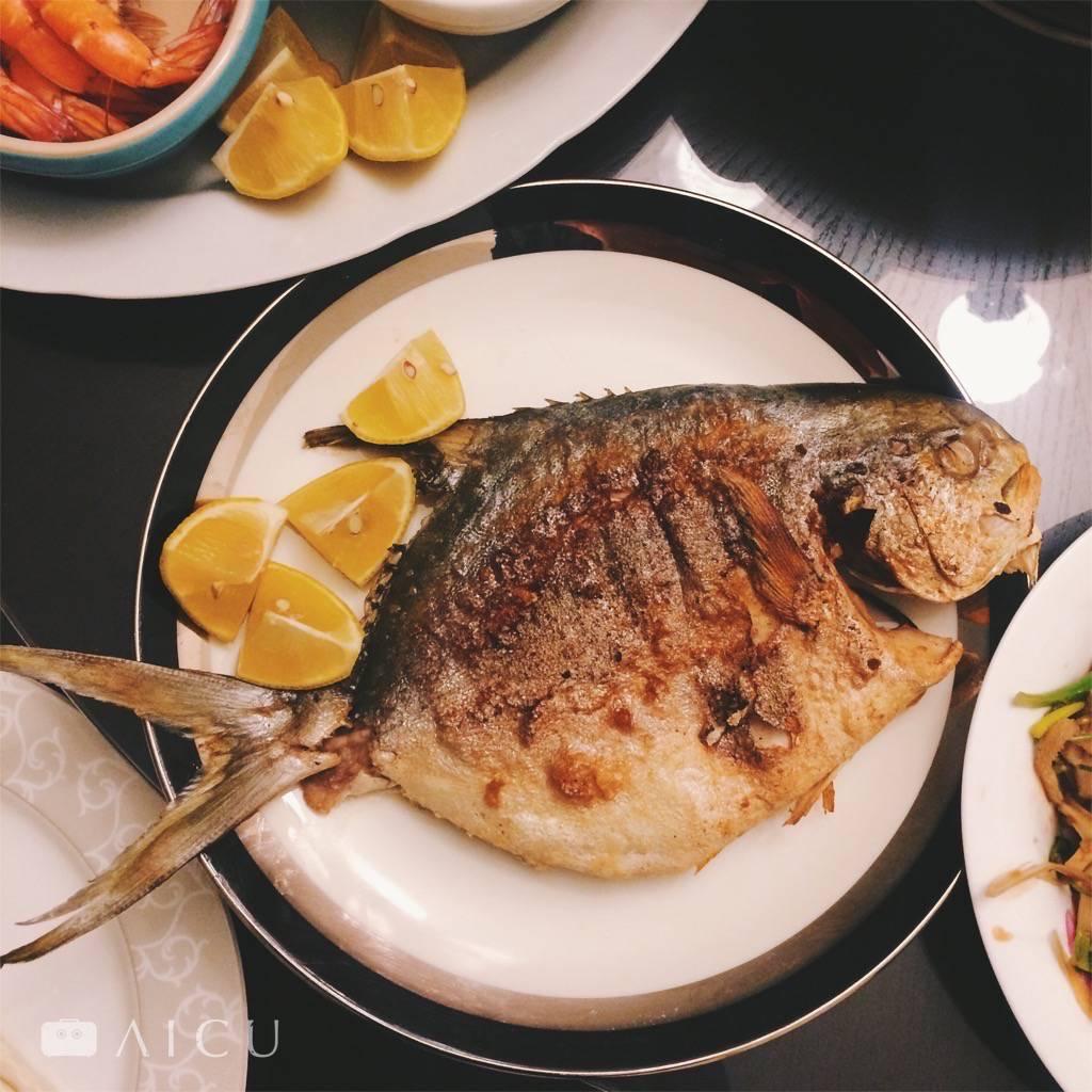 養殖金鯧價格和品質都穩定,大尾一斤重,肉質細嫩,不一定要選擇貴又小的野生白鯧。