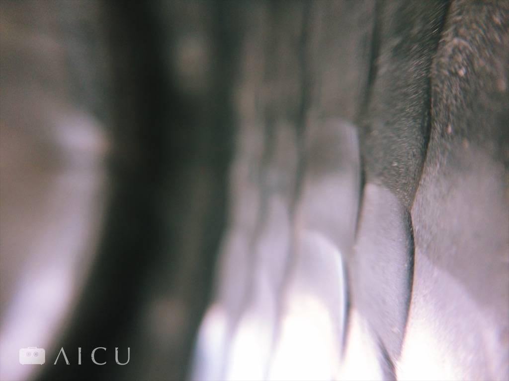 緊密的鎚打紋,但不鏽鋼就無需這樣鎚打。