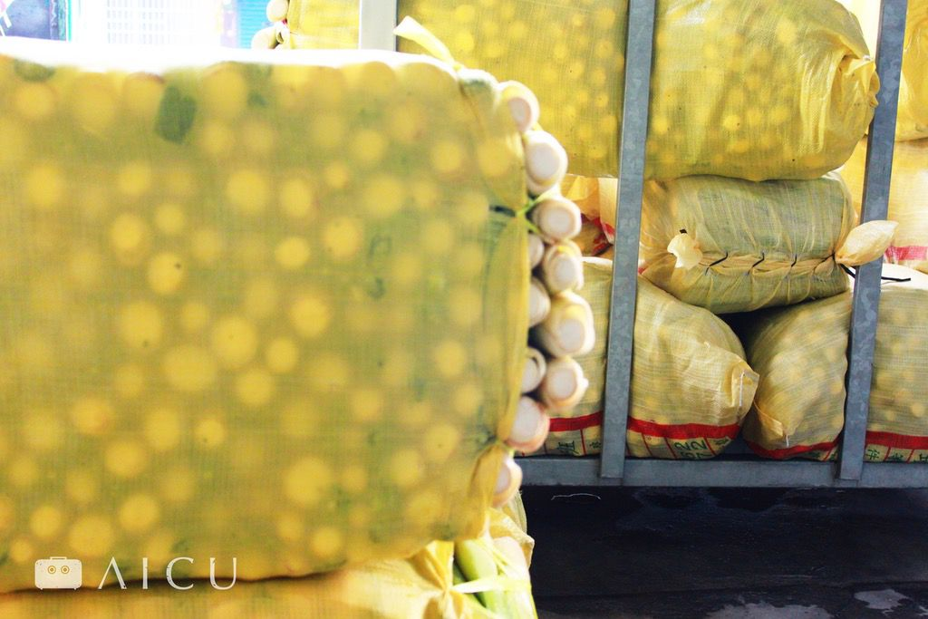 準備出貨到果菜市場的筊白筍們