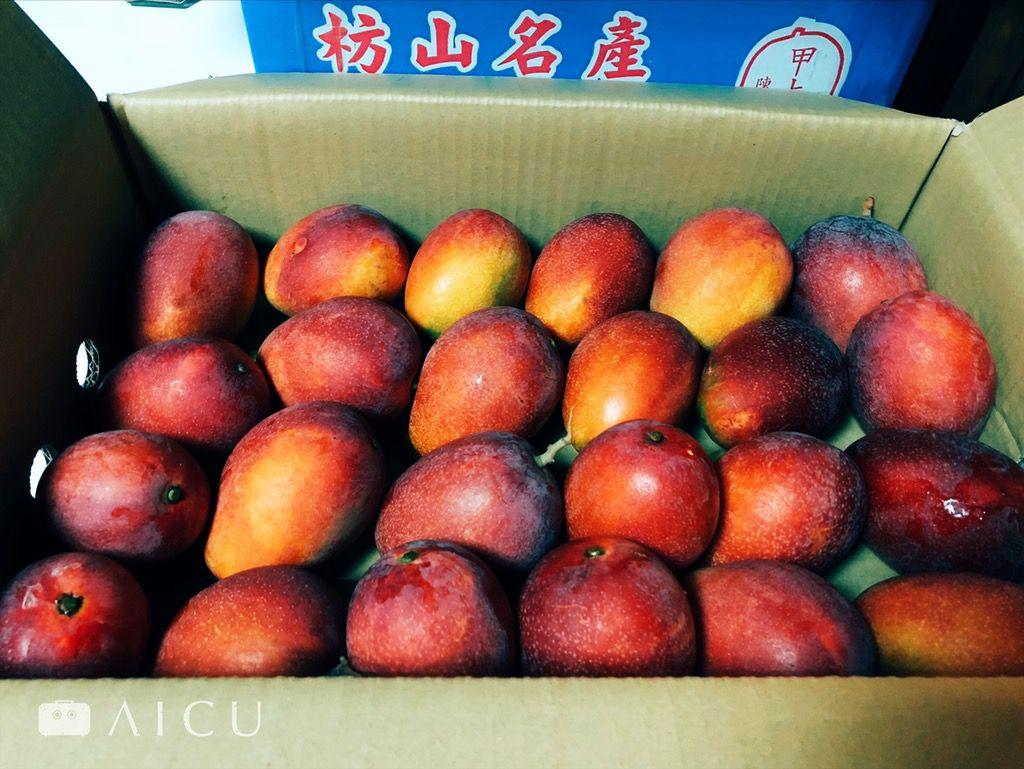 產地直送的芒果品級可自選,厚實有酸有甜。
