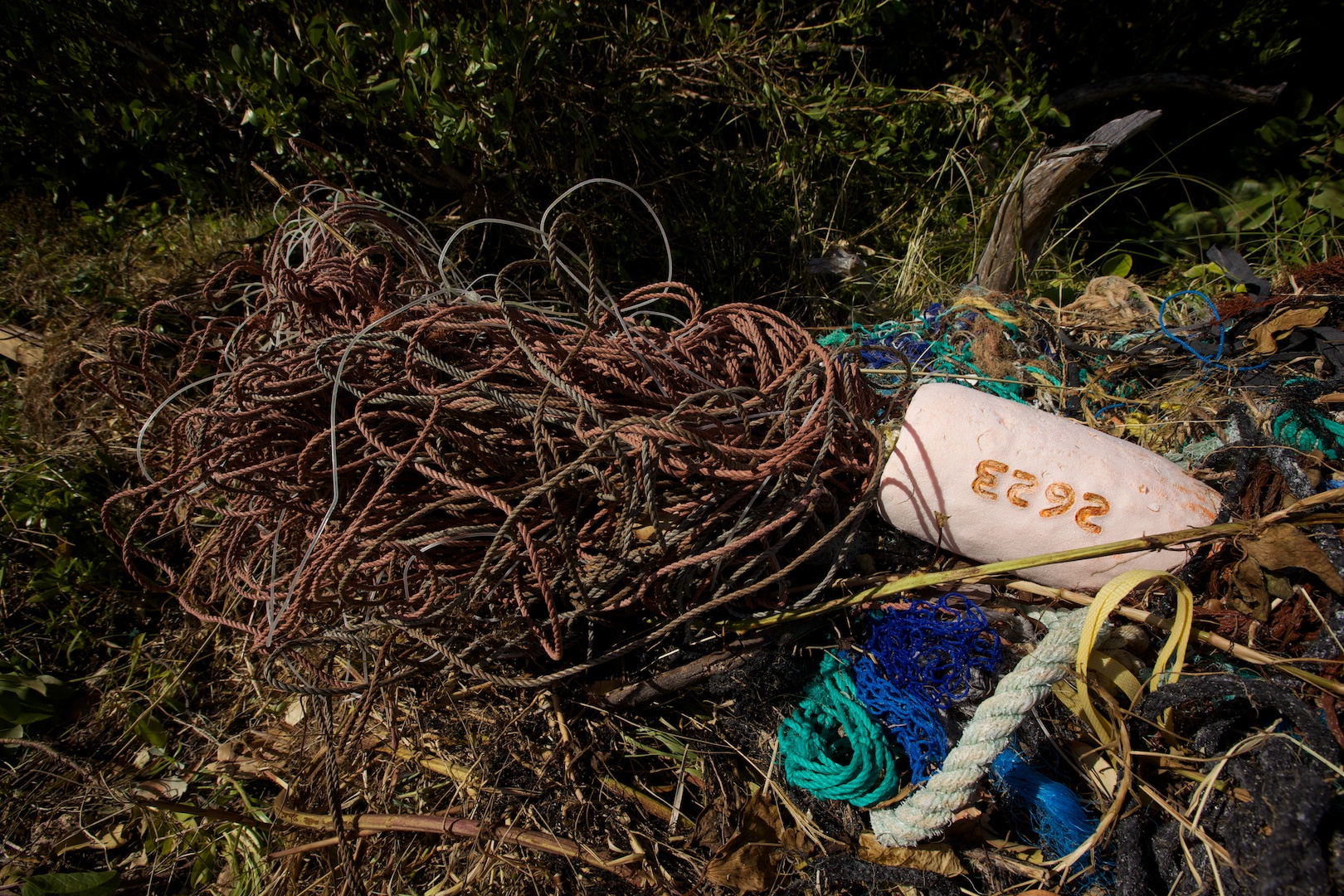 Longliner gear washed up on Nonsuch beach after hurricane Gonzalo
