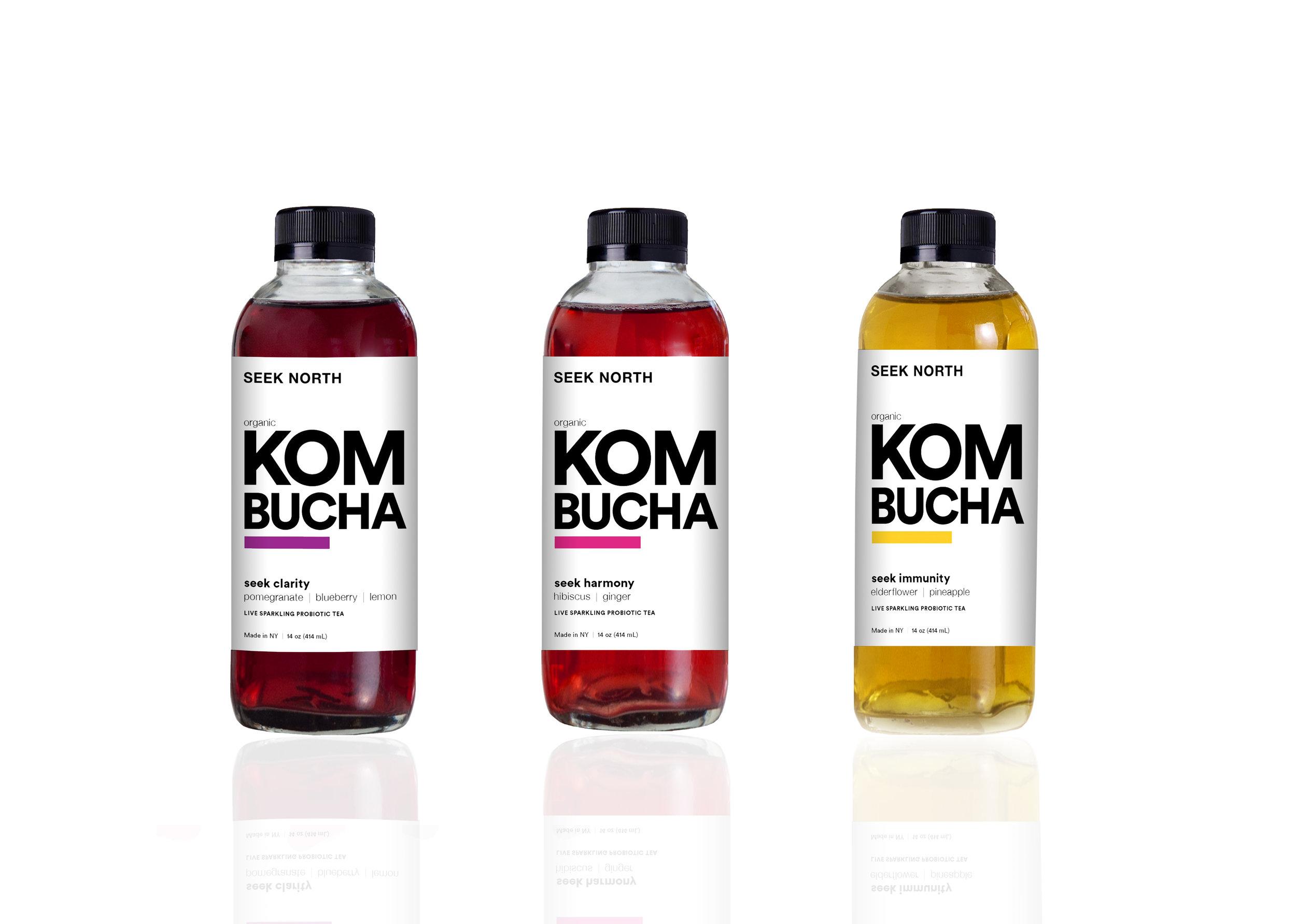 seek north kombucha bottles.jpg