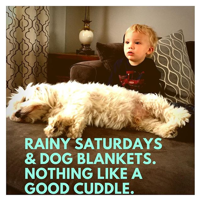 We wish you a long slow Saturday. Enjoy a good cuddle with your furry friends. ❤️🐶☺️