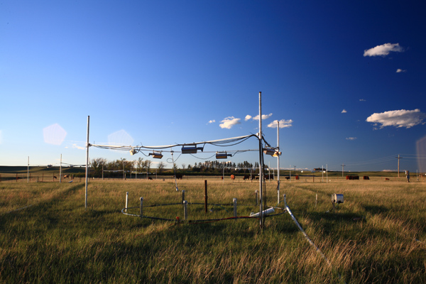Prairie Heating and CO2 Enrichment Experiment, Cheyenne, Wyoming