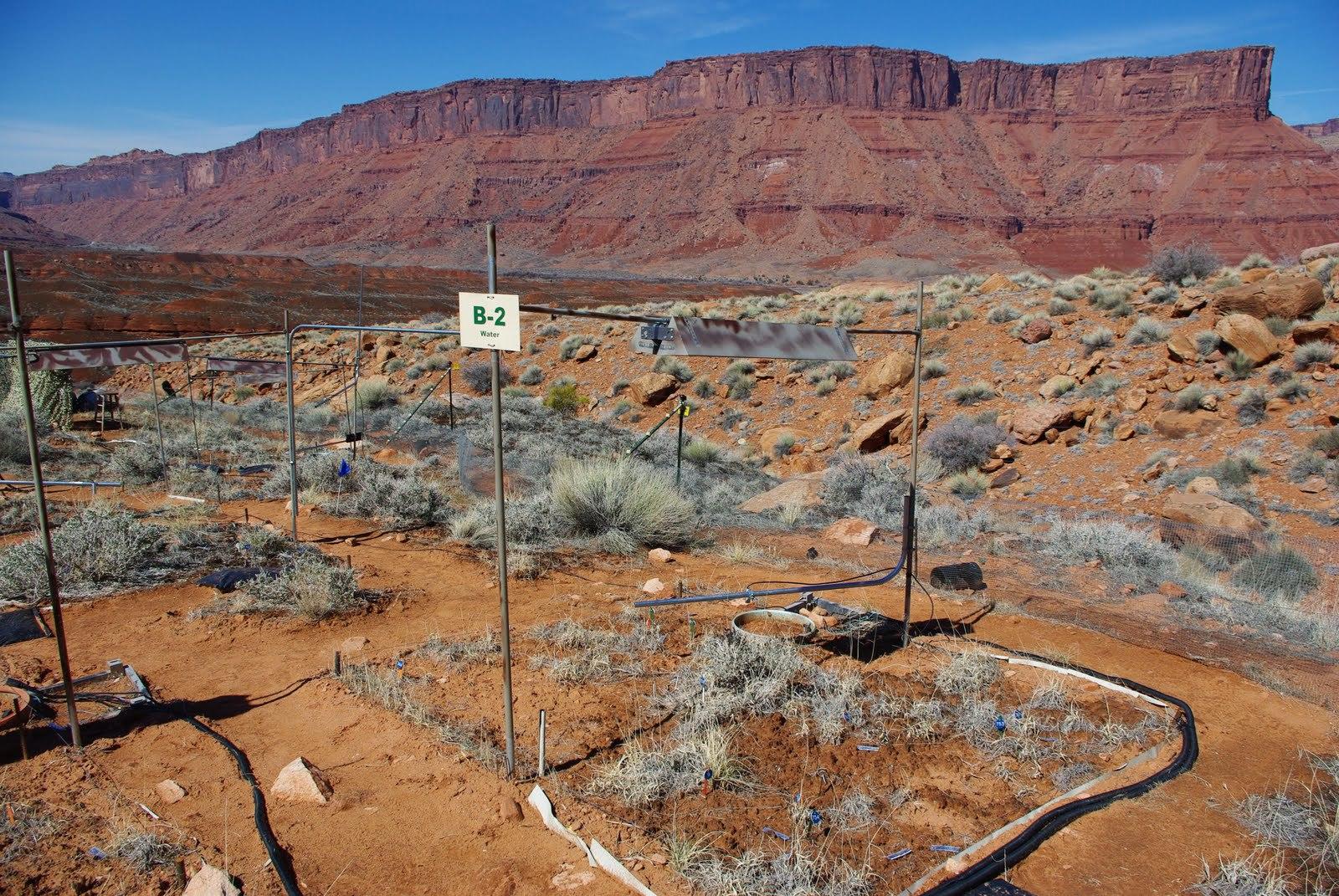 USGS Global Change Experiment, Castle Valley, Utah