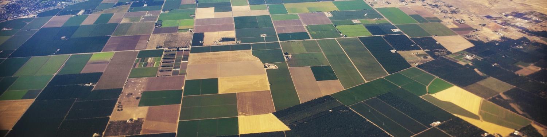 California Farms.jpg