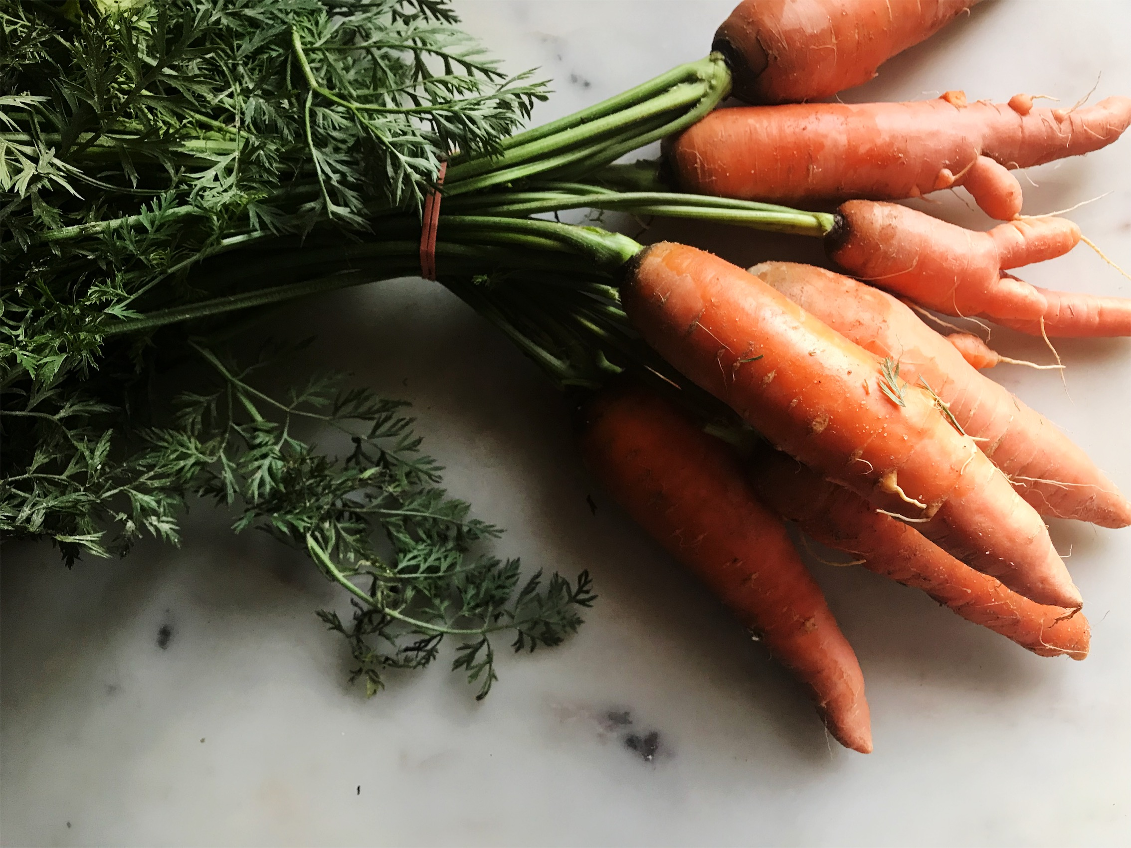 Perfectly imperfect carrots from the market.