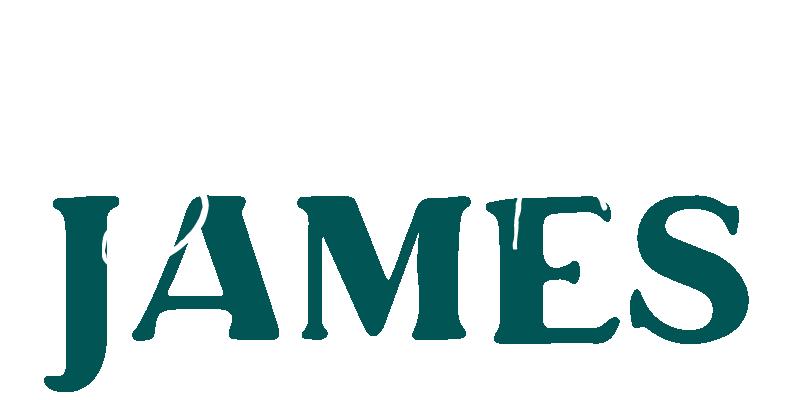sara and alex james