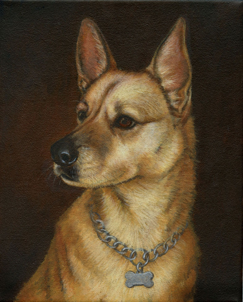 Dog-Portrait-final-Luckie