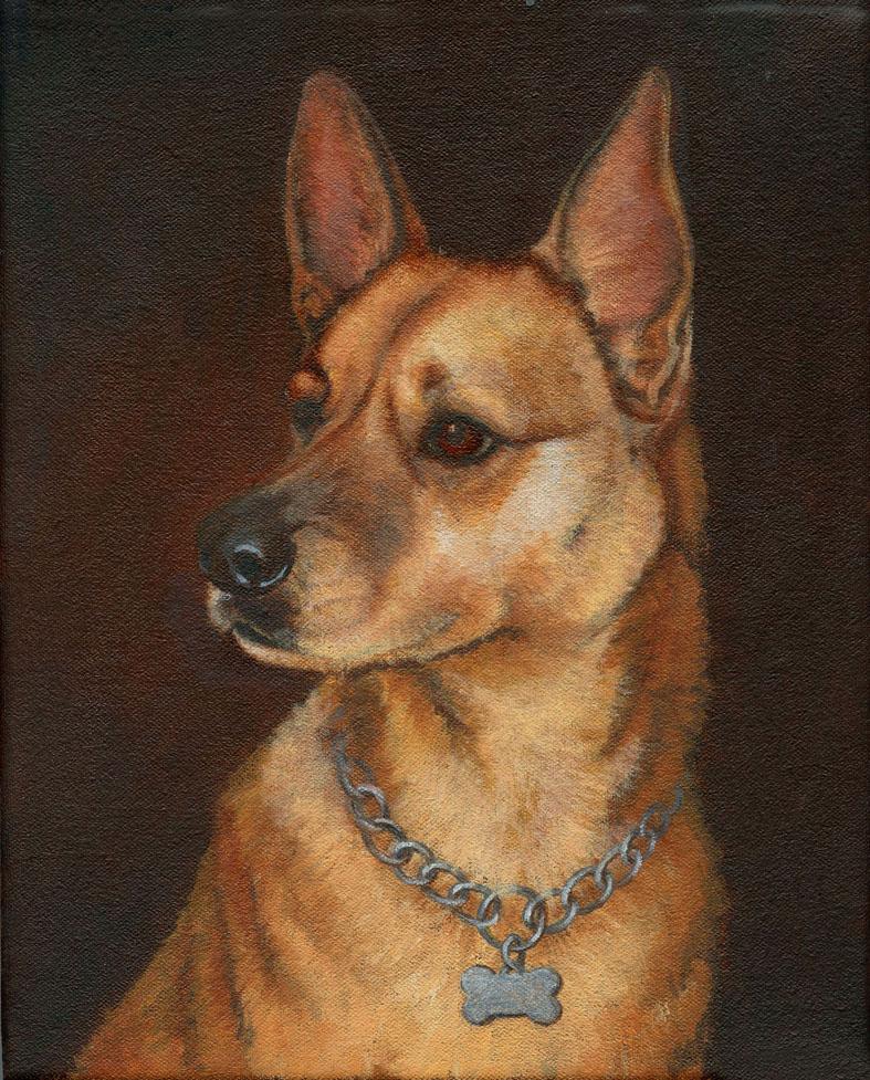 Dog-Portrait-Luckie ptg 3