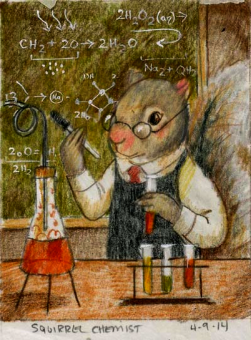 Squirrel Chemist sketch