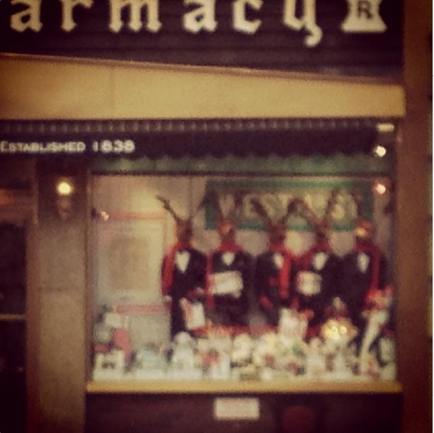 Reindeer in scarves in Bigelow Pharmacy