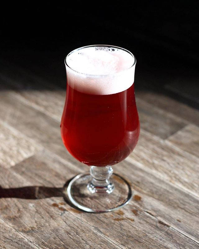Come drink some @5rabbitbrewery Huitzi Brut Midwinter Ale because it is indeed midwinter. And we are desperately in need of a bright brew. Bone dry and brewed with hibiscus, chamomile, ginger, Thai palm sugar and Chicago honey.