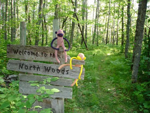 The North Woods Troupe lives in a little cabin on the shores of Lake Wilderness, in the middle of the big, big woods.