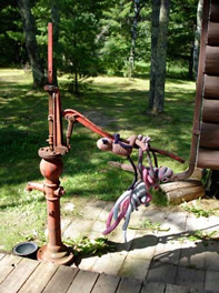 Pumping water is the biggest chore around the cabin. It takes so many monkeys to get even one pailful out of the ground!