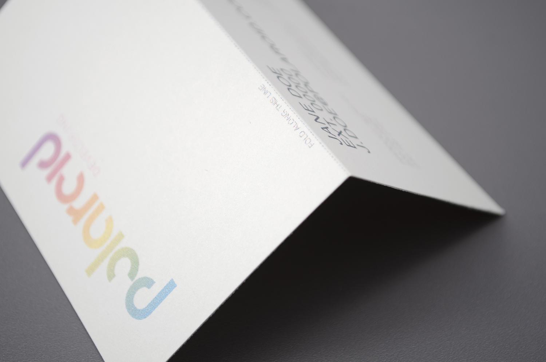 polaroid11.jpg