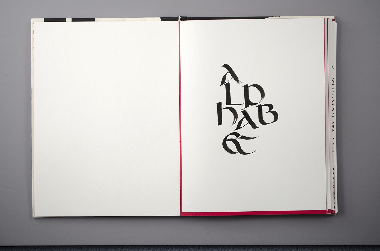 types22.jpg