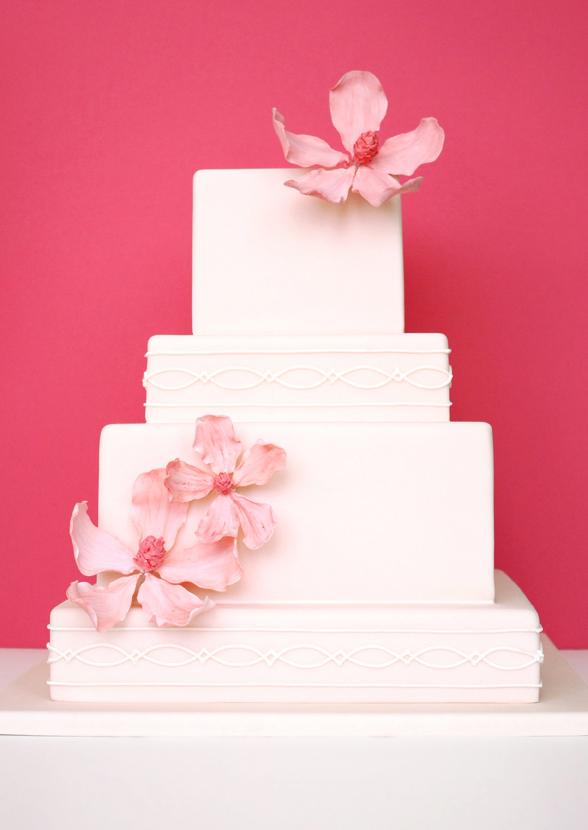 eatcakebemerry_parisian_pink_cake.jpg