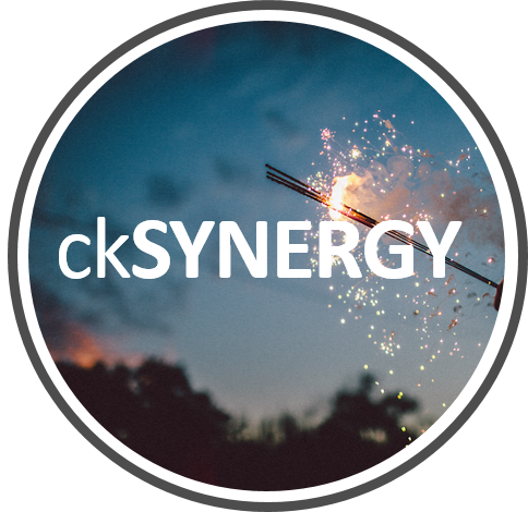 ckSYNERGY image.png
