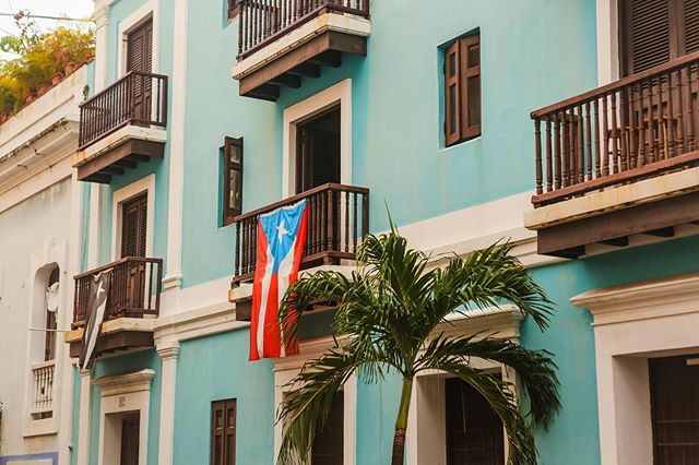 Colorful buildings, friendly people, amazing wildlife... there is so much to love about Puerto Rico! I finally got around to creating a blog post, the link is in my bio! Go check it out 😁