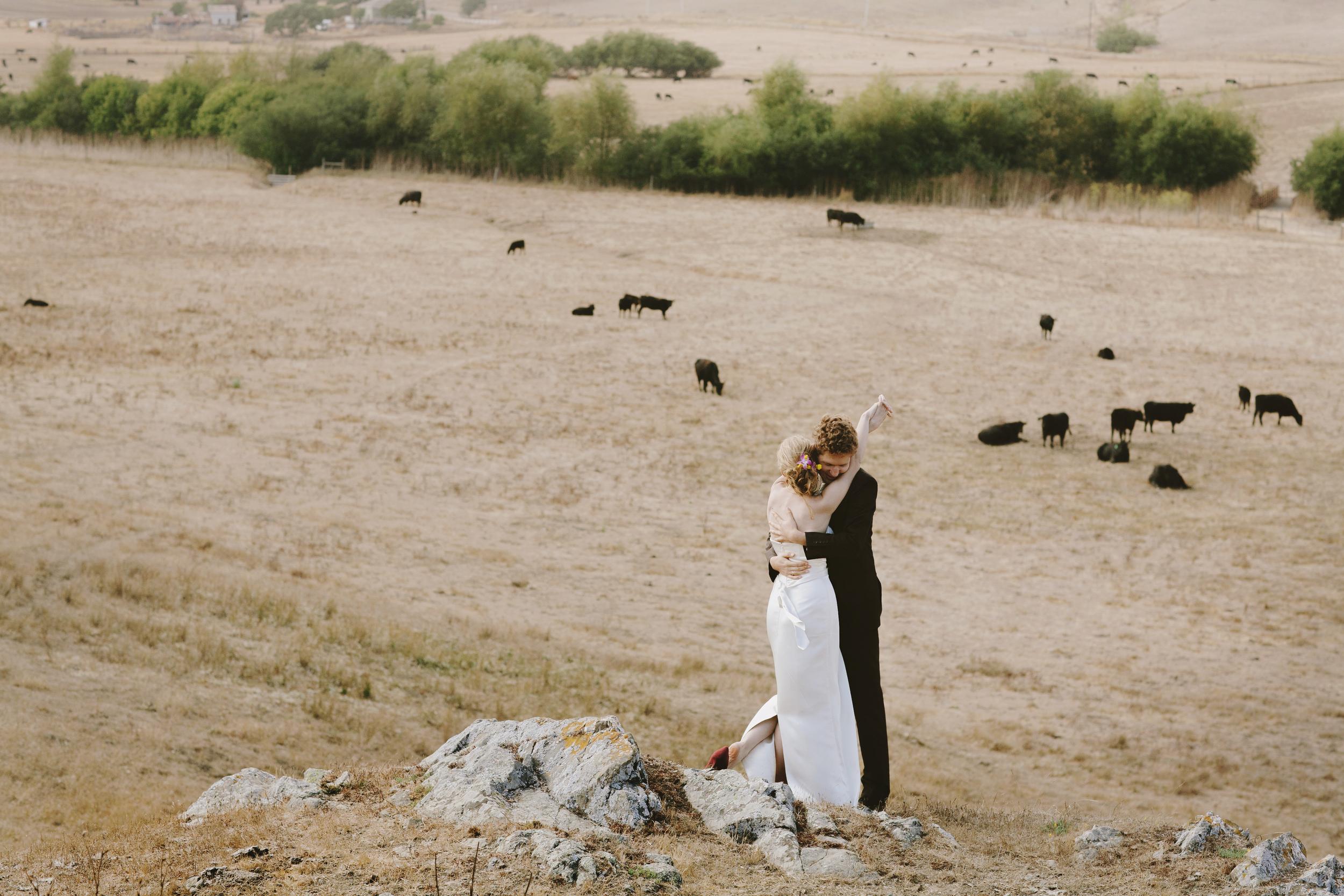 Napa Valley Rustic Farm Wedding