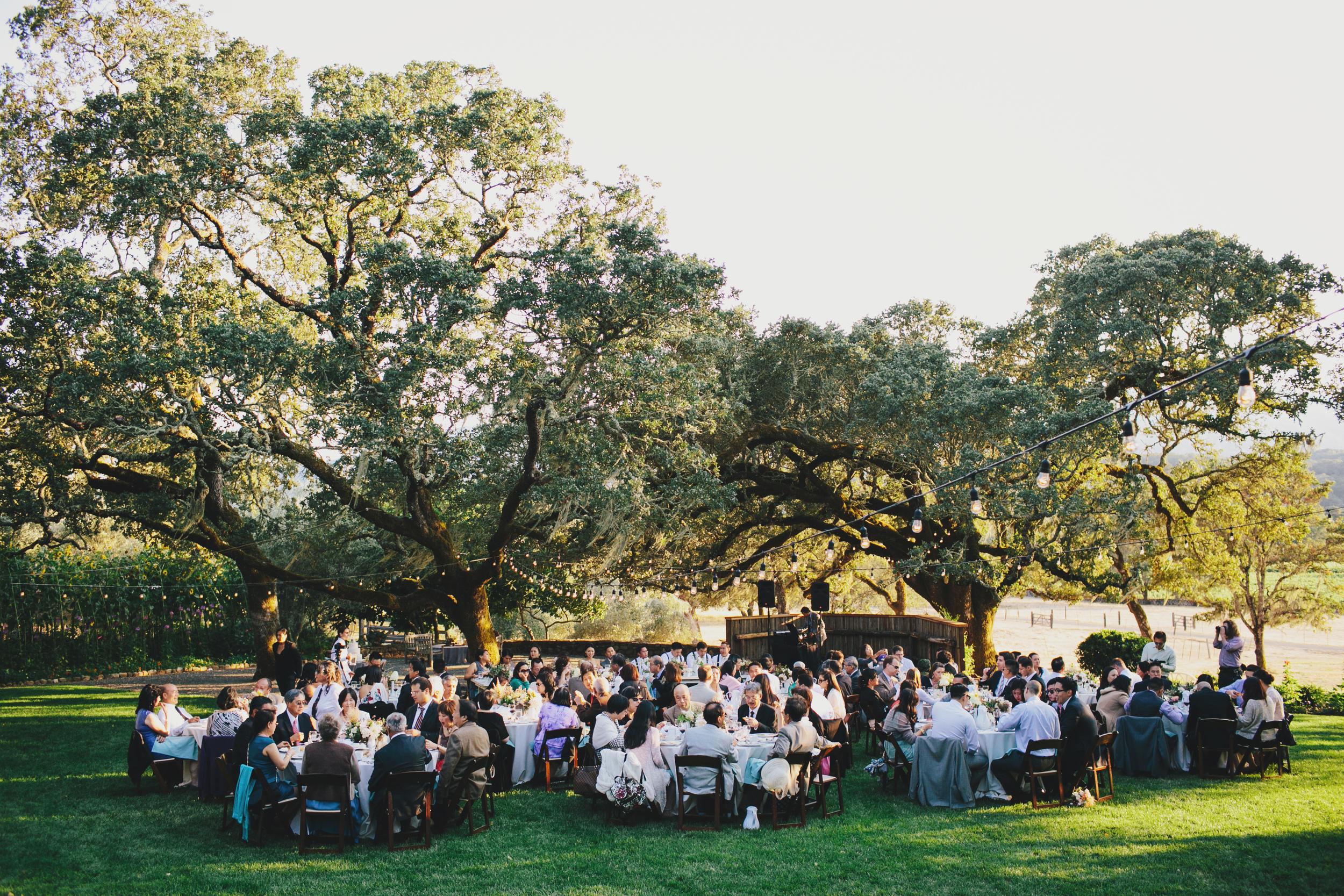 Beltane_Ranch_Wedding-34.JPG
