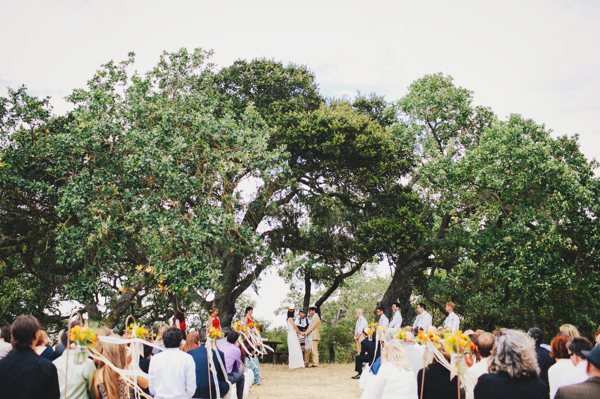 Petaluma_Wedding-24.JPG