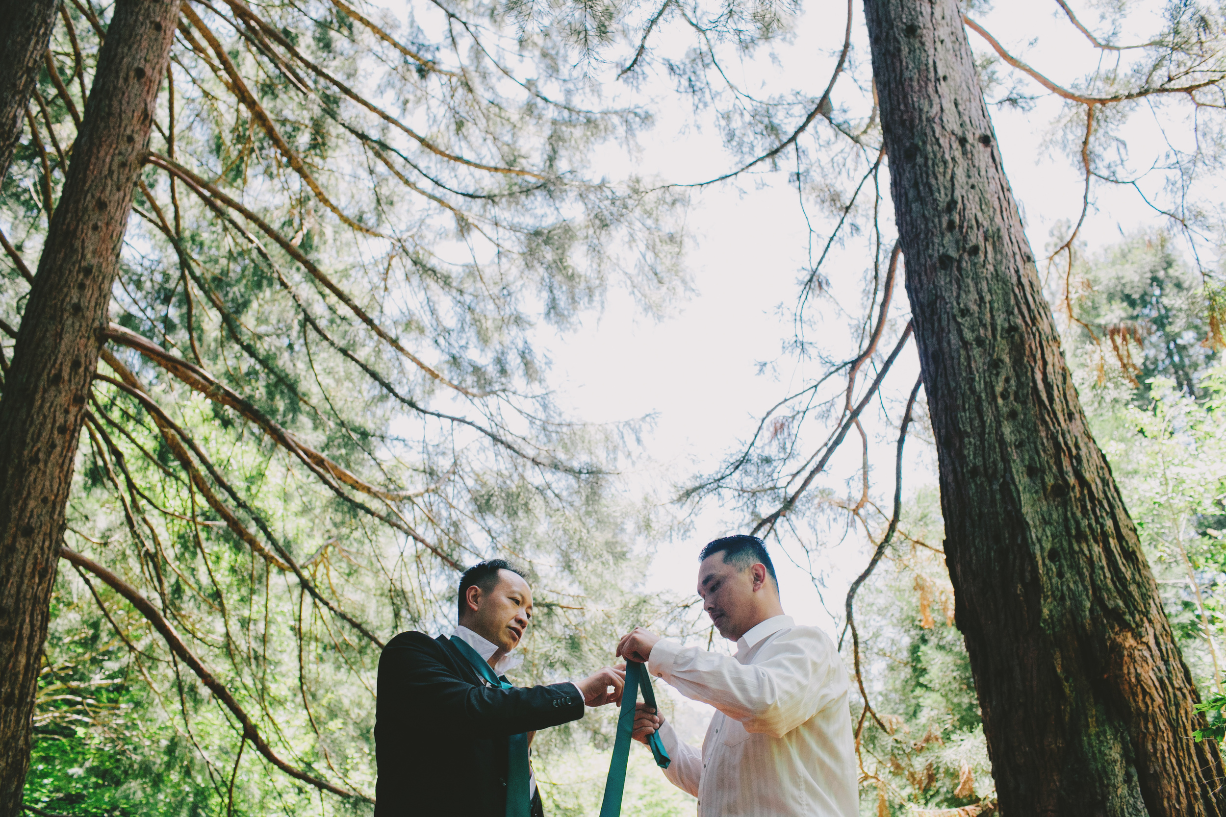 Tilden_Wedding_Berkeley-02.JPG