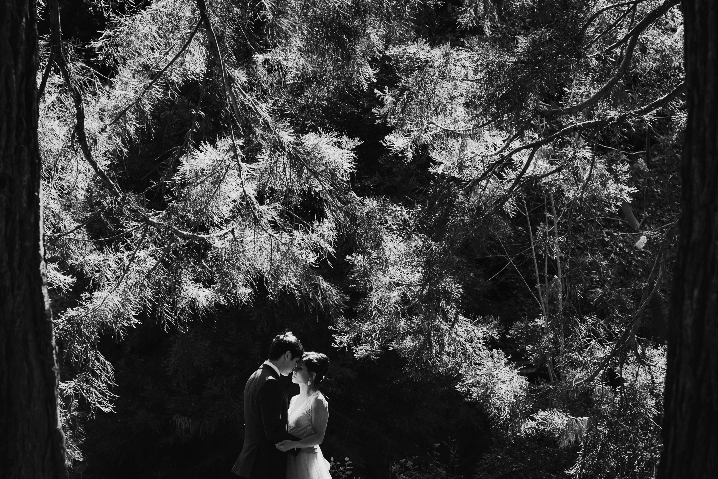 Tilden_Wedding_Berkeley-29.JPG