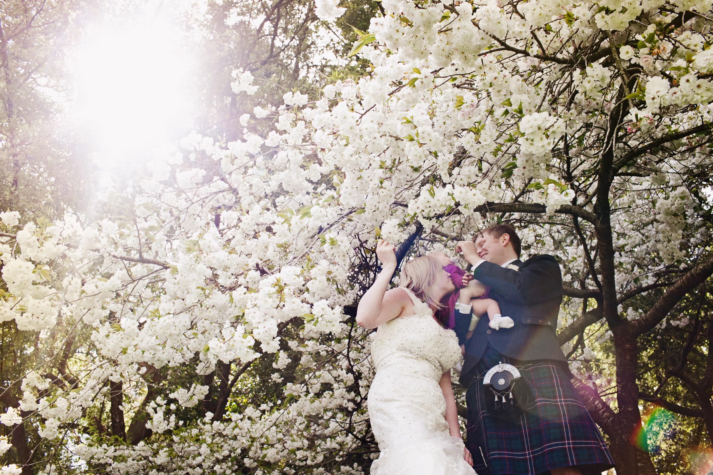 City_Hall_SF_Wedding_Photography-27.JPG