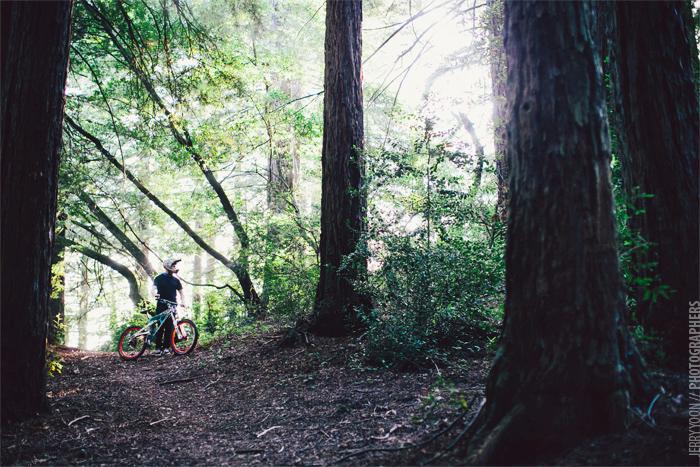 Redwood_Regional_Park_Engagement-08.JPG