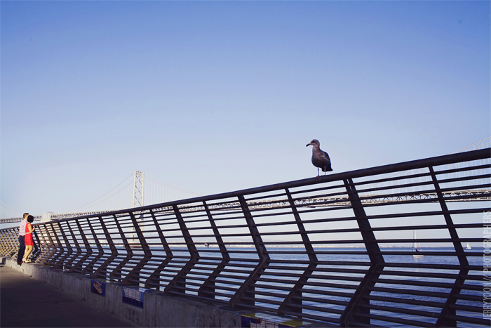 Ferry_Building_Treasure_Island_Beach_Engagement_San_Francisco-10.JPG