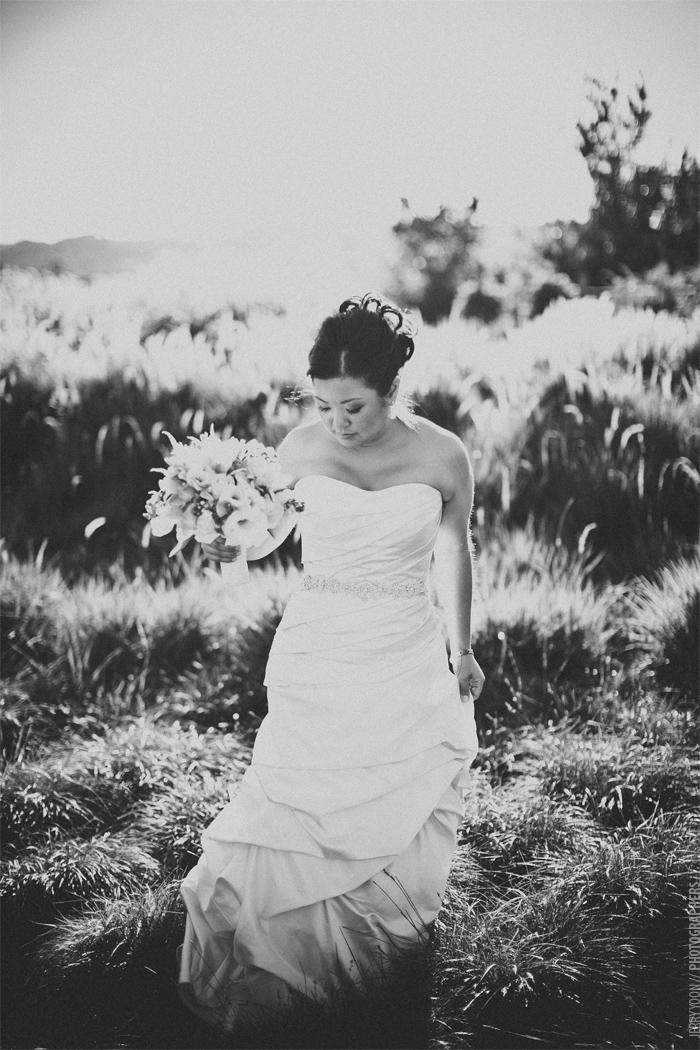 Cornerstone_Sonoma_Wedding_Sherry_Steve-15.JPG