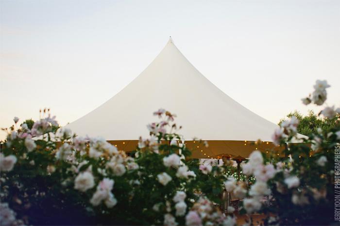 Cornerstone_Sonoma_Wedding_Sherry_Steve-79.JPG